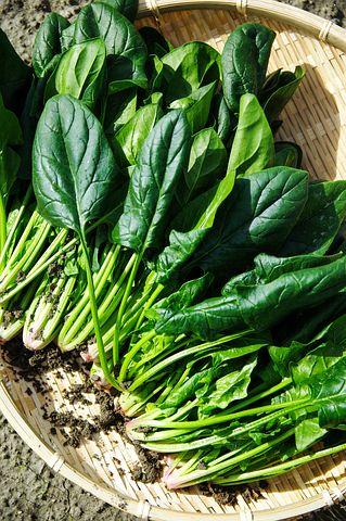 vegetables-1125420__480