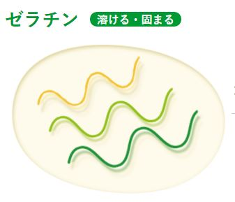 コラゲネイド2